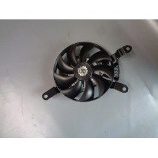 FAN ASSY, RADIATOR RH 17810-17K00