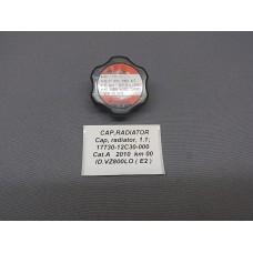 CAP, RADIATOR 17730-12C30-000  - SFV 650 Gladius/VZ 800/VLR 1800/VL 800 Volusia