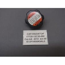 CAP,RADIATOR 17730-12C30-000  - SFV 650 Gladius/VZ 800/VLR 1800/VL 800 Volusia